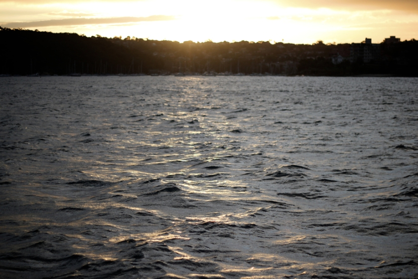 sydney_ferry_ocean_waves_harbour_sunset