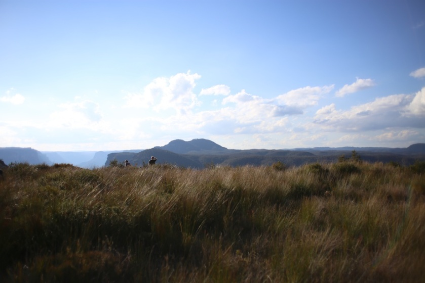 mount hay | south by north