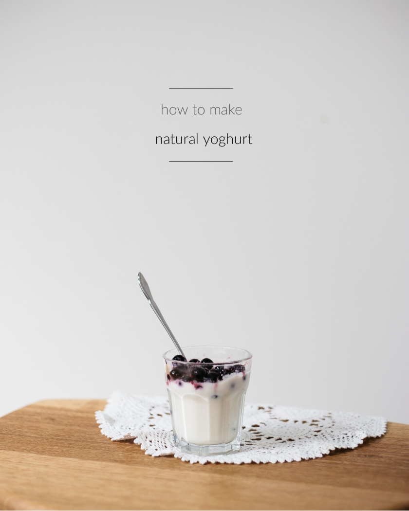 how to make natural yoghurt | south by north